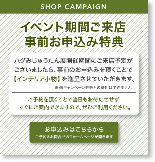 info_campaign_20171104